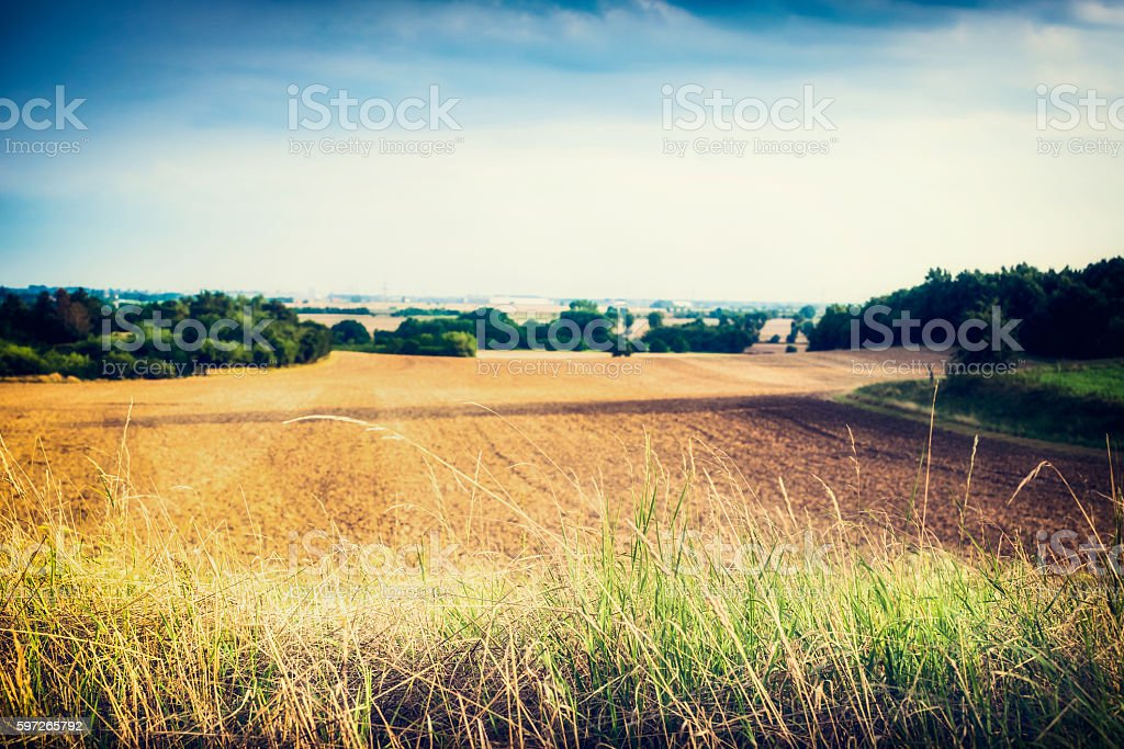 Countryside  Landscape with grass, outdoor nature background Lizenzfreies stock-foto