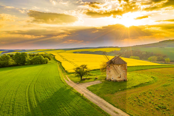Countryside landscape with windmill and rapeseed field, Moravia, Czech Republic Drone point of view shot of an idyllic countryside landscape with view of the exterior of a traditional windmill and a vibrant yellow rapeseed field under a moody sky at sunset, Moravia, Czech Republic moravia stock pictures, royalty-free photos & images
