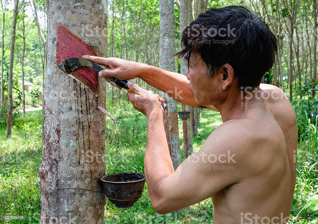 countryside life style - raw rubber gardener stock photo