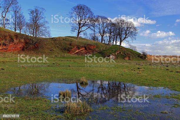 Countryside Meadow Reflection Stock Photo - Download Image Now