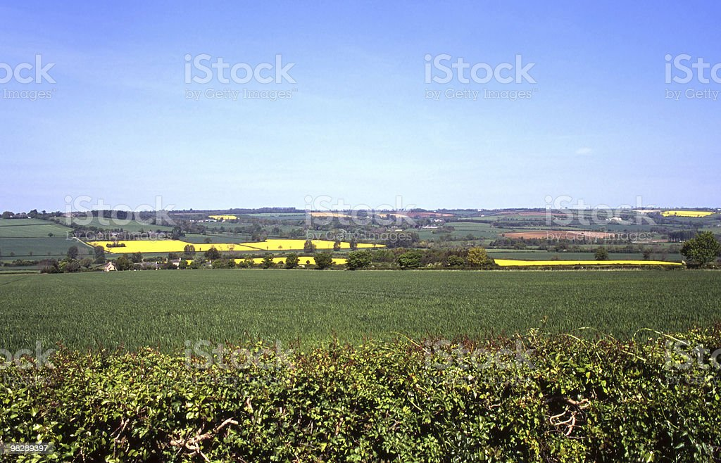 Campagna vicino al Chipping Norton, Oxfordshire, Inghilterra foto stock royalty-free