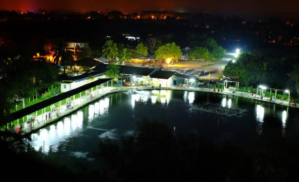 campagne étang de pêche nocturne - cage animal nuit photos et images de collection