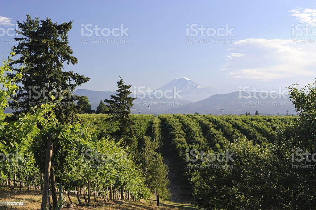 Countryside of Hood River stock photo