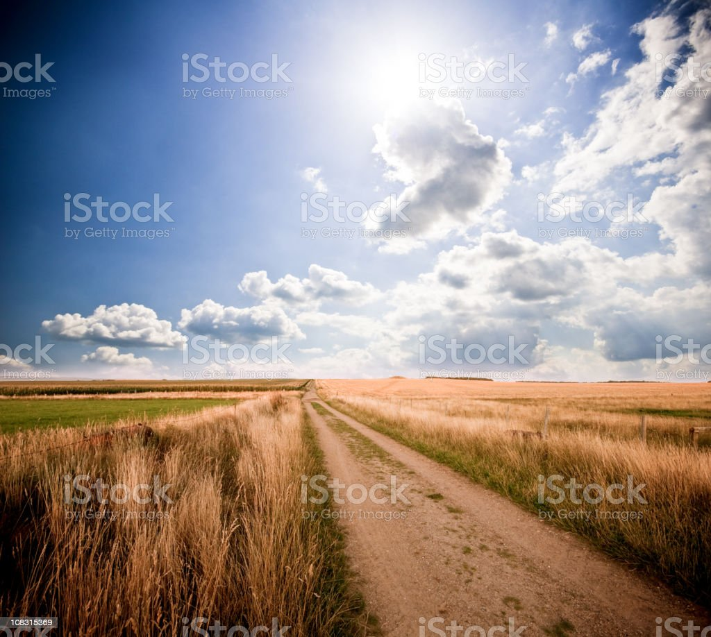Countryside path royalty-free stock photo