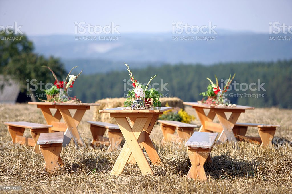 countryside picnic preparation royalty-free stock photo