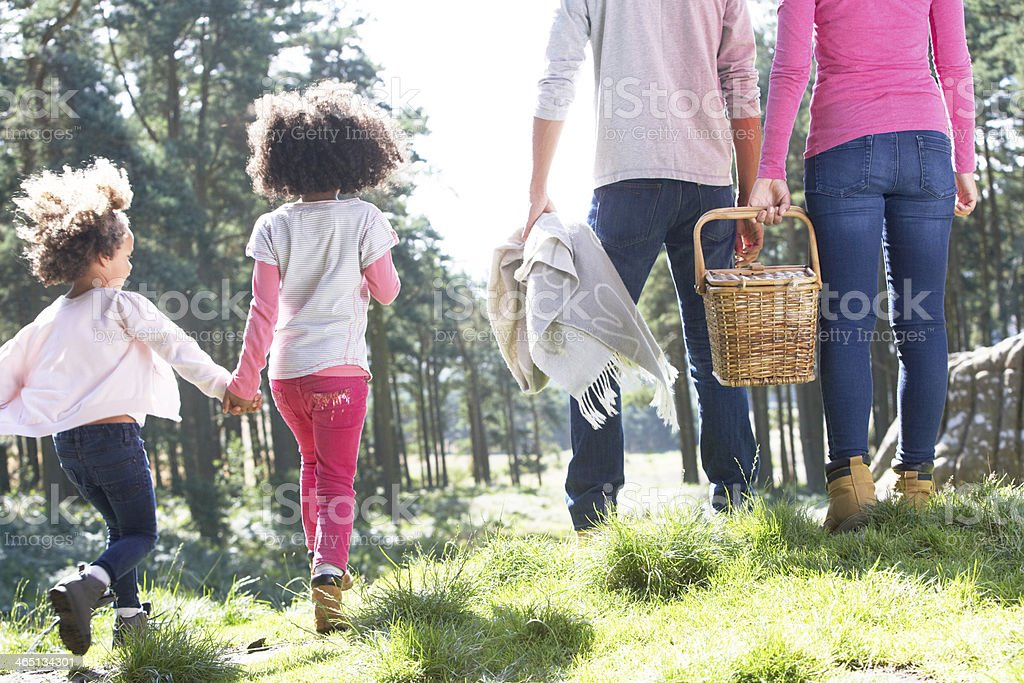 Countryside picnic with family stock photo