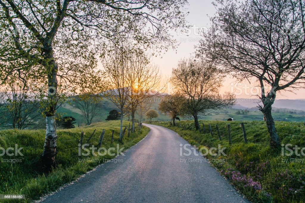 Countryside road at sunset stock photo