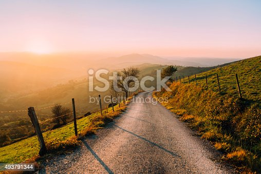 istock Countryside road 493791344