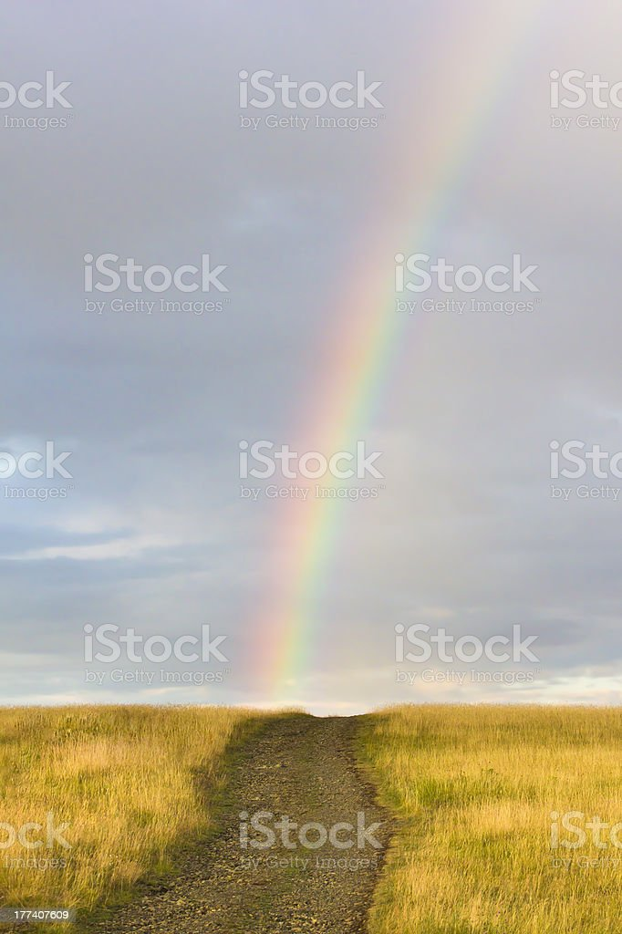 countryside road through yellow field to the rainbow stock photo