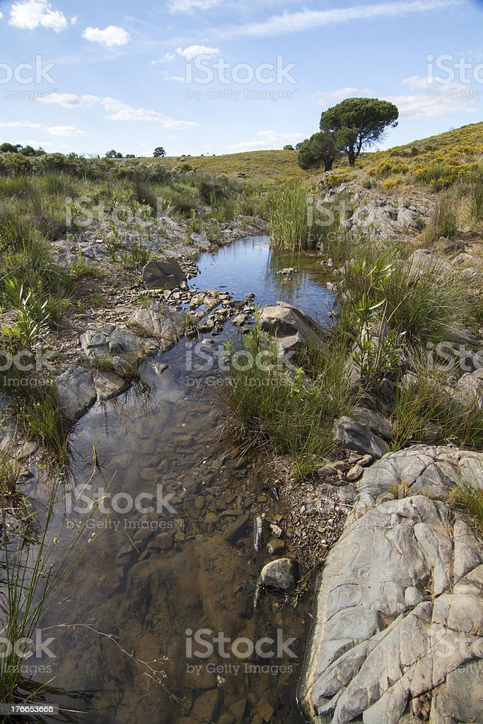 countryside stream of water royalty-free stock photo