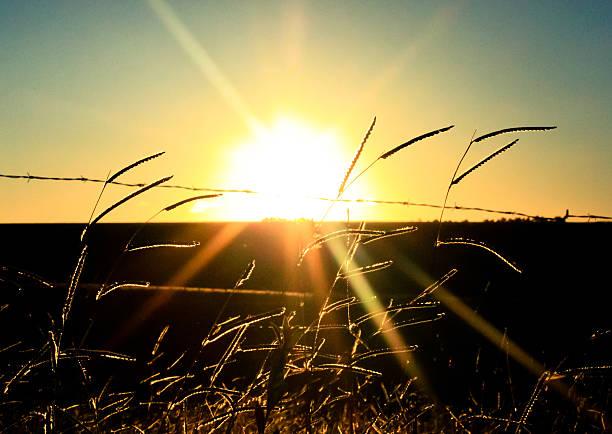 Countryside sunset stock photo