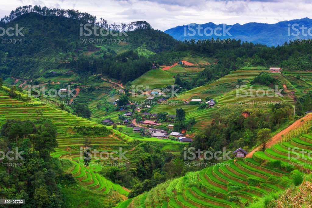 Countryside view at Mu Cang Chai, Vietnam stock photo