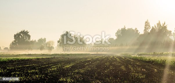 Countryside View, Mist in the Morning, Sun Rays