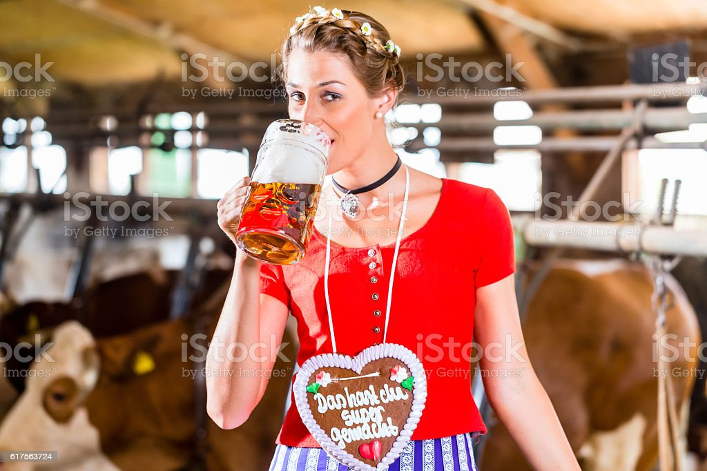Countrywoman drinking beer in cowhouse stock photo