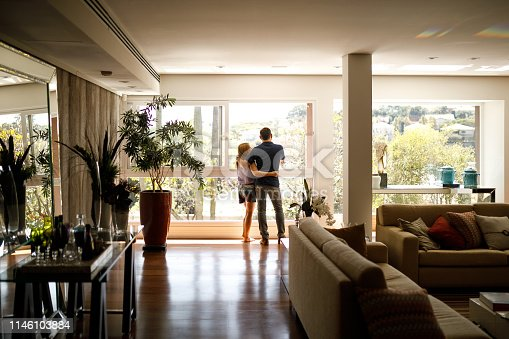 istock Couple admiring the view from the living room of their house. 1146103884