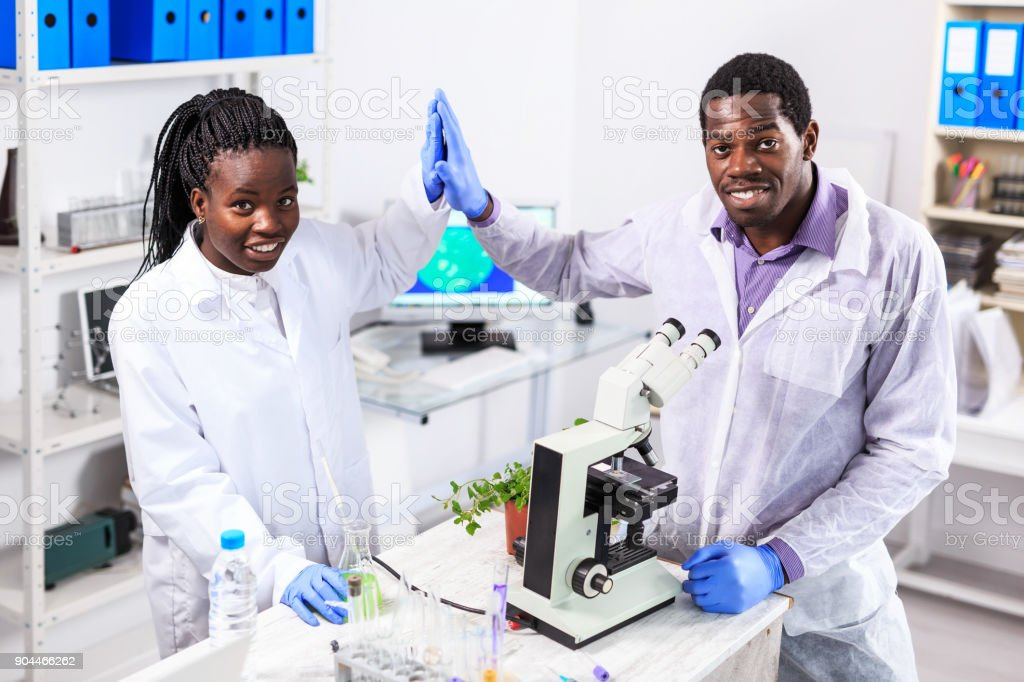 Couple african laboratory workers using microscope stock photo
