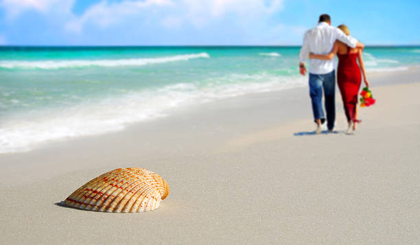 Couple and Seashell on Tropical Beach stock photo