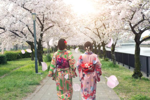 paar asiatische frauen tragen traditionelle japanischen kimono in sakura garten in osaka, japan. - kimono stock-fotos und bilder