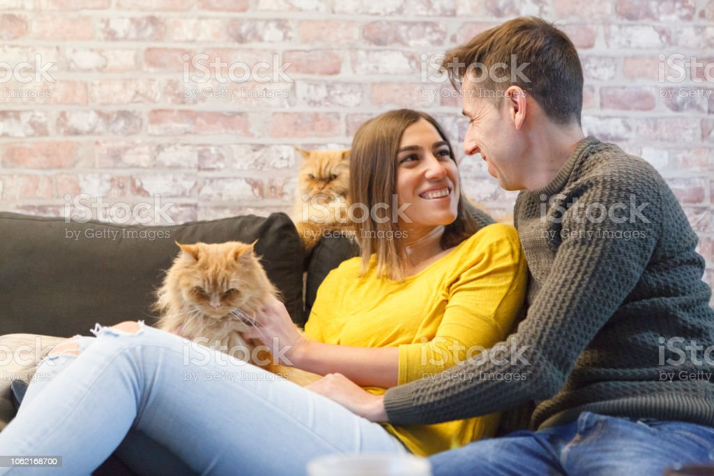 romantic couple at the couch with cats