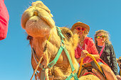 Couple camel riding in Australian desert of Northern Territory. Caucasian tourists enjoys camel ride on red dunes of Red Centre, Central Australia. Popular tourist activity in Australian Outback.