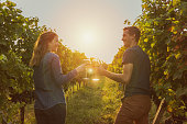 Couple clinking red wine glass in a Vineyard during sunset.