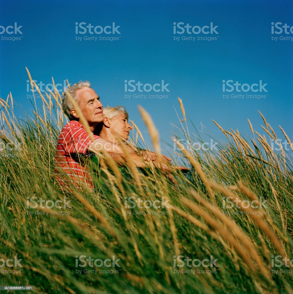 Couple embracing in long grass royalty-free stock photo