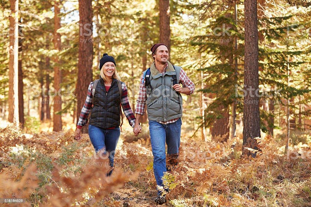 Um casal aproveita uma caminhada em uma floresta, Califórnia, EUA - foto de acervo