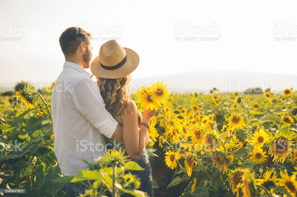Couple enjoying summer time at sunflowers field stock photo