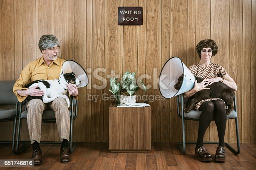 A man and his dog sit in the waiting room at a veterinary clinic, making eyes at a woman on the other side of the room.  Both of their puppy dogs are wearing flea cone collars to prevent from scratching and itching.  A funny concept shot about love and relationships.