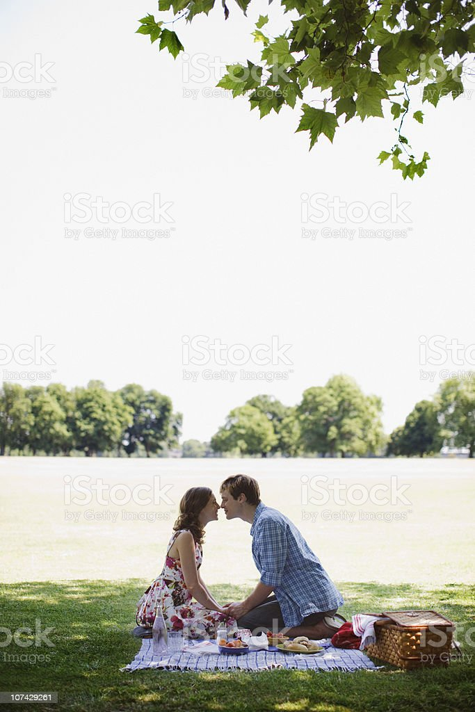 Couple having picnic in park royalty-free stock photo