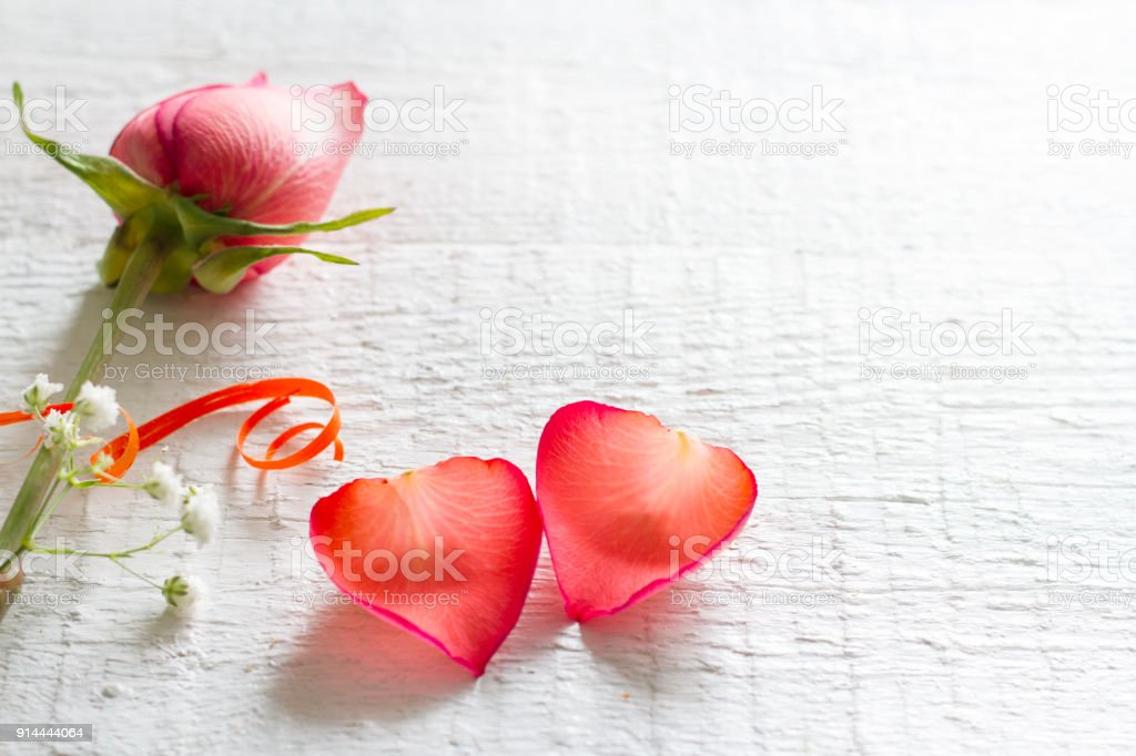 38539c88e Couple heart petals rose on white background love valentines concept -  Stock image .