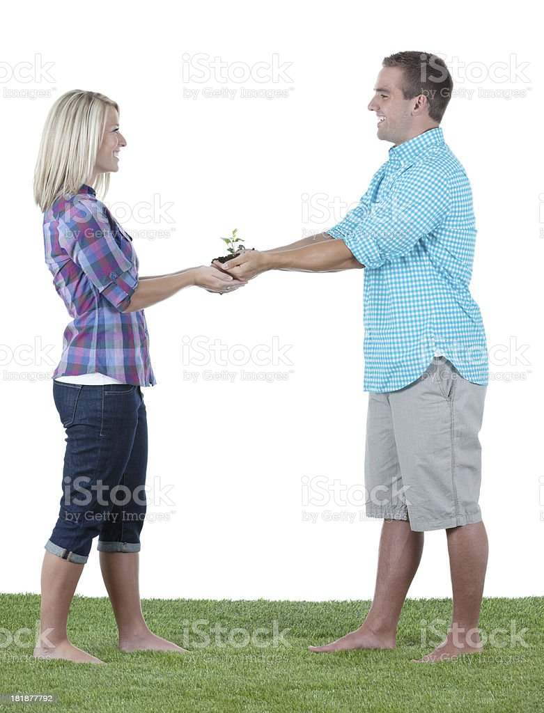 Couple holding  a seedling stock photo