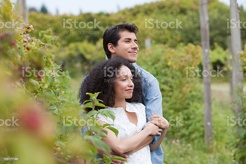 Couple hugging on a fruit farm royalty-free stock photo