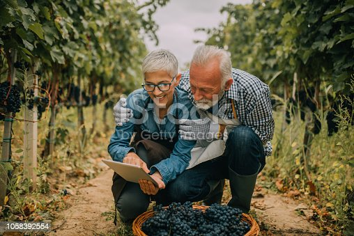 1063236916 istock photo Couple hugging when using digital tablet at plantation 1058392554