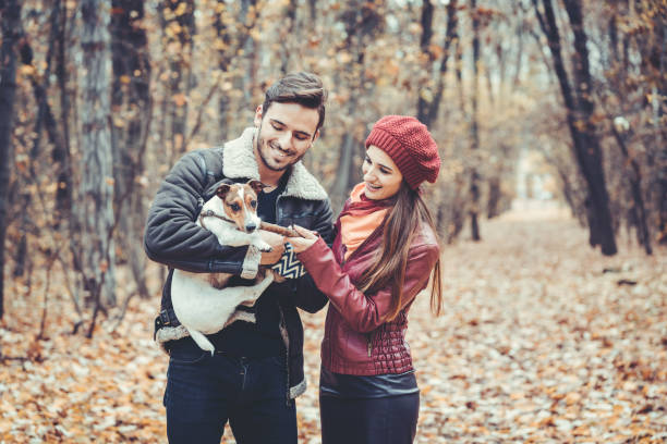 Couple in fall having walk with dog in a park picture id1033244922?b=1&k=6&m=1033244922&s=612x612&w=0&h=wumgtqqeyk5k8v9hqsu44riquvodtogdtpixfhxvoiy=