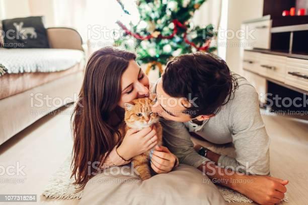 Couple in love lying by christmas tree and playing with cat at home picture id1077318284?b=1&k=6&m=1077318284&s=612x612&h=r hvvbgpedgnzpg7vslz9j wji3zmkzt226f6d41vfe=