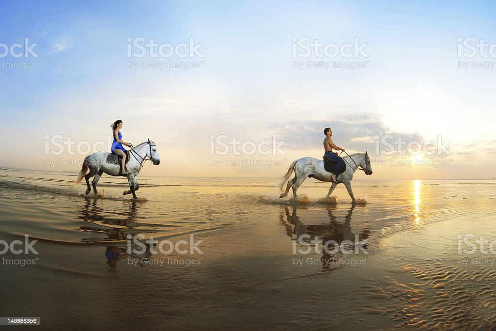 Couple in love, which is galloping on a horse stock photo