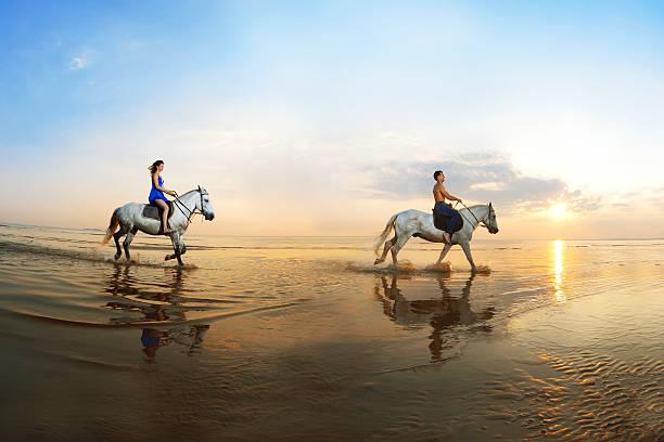 연인 외래를 galloping 승마 스톡 사진