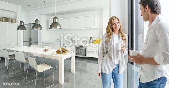 istock Couple in modern kitchen 506903624