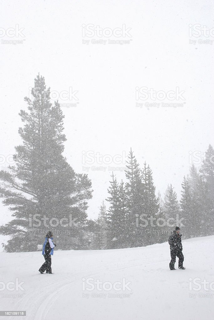 Couple in the Snow Storm royalty-free stock photo