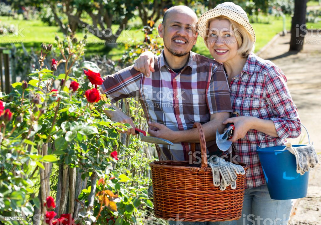 Couple looking after flowers in the garden stock photo