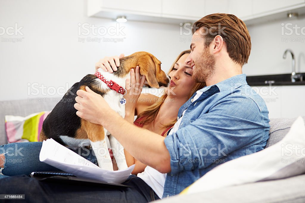 Couple Looking Through Personal Finances At Home With Dog stock photo