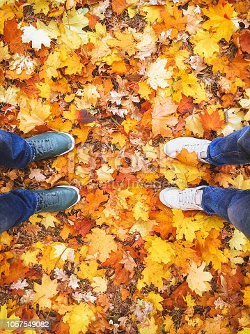 istock Couple male woman legs sneakers outdoor autumn leaves background lifestyle Fashion 1057549082