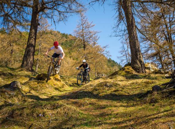 paar-mountainbiking im wald - kanton schweiz stock-fotos und bilder
