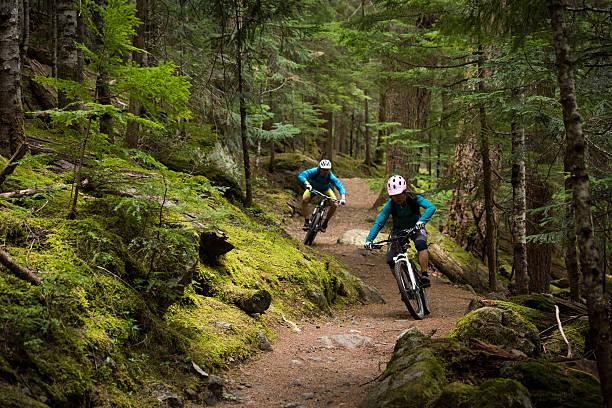 Par ciclismo un través de un bosque - foto de stock