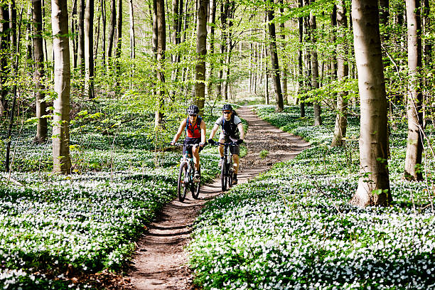 couple mountain biking together - mountain biking stock photos and pictures