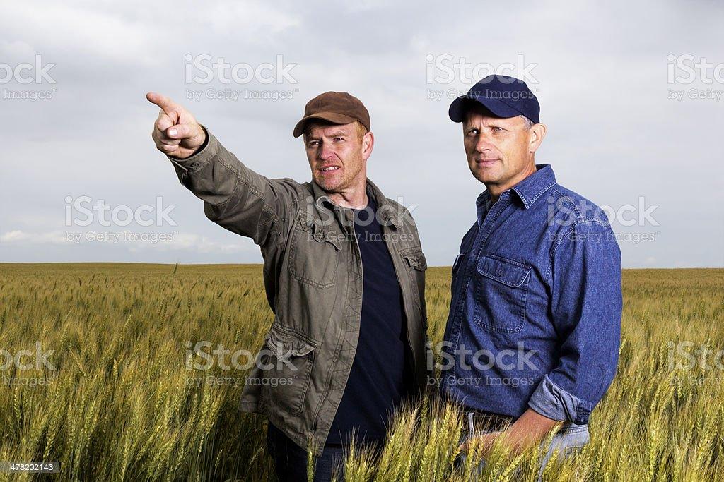 Paar o Landwirte – Foto