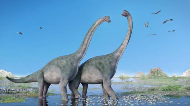 paar von brachiosaurus altithorax und eine herde der pterosaurier in einer malerischen landschaft late jurassic - dinosaurier illustration stock-fotos und bilder