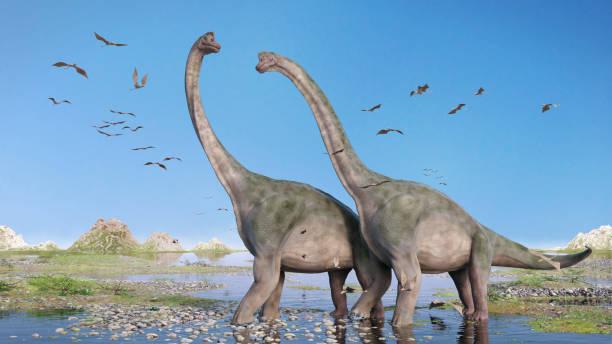 paar von brachiosaurus altithorax und eine herde der pterosaurier in einer malerischen landschaft late jurassic - dinosaurier stock-fotos und bilder