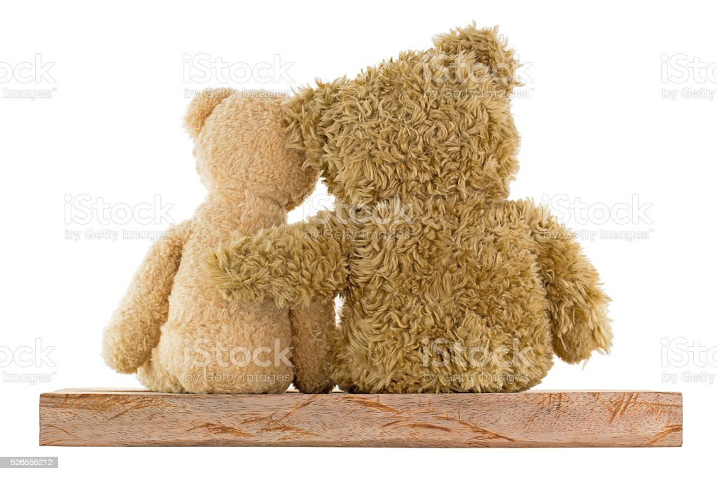 Couple of brown bears sitting on wood hugging each other stock photo